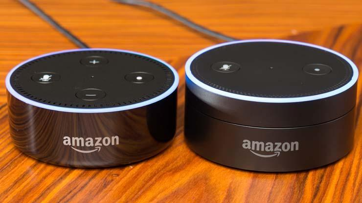 Fraud Investigation – Parents can't delete what kids tell Amazon voice assistant